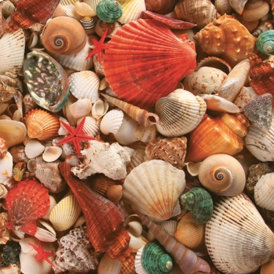 Lunch Servietten Muscheln