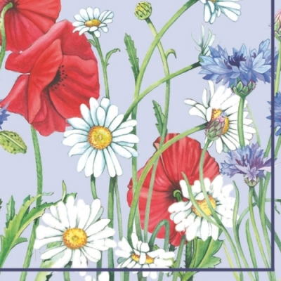 Servietten Blumenmotive,  Blumen - Magariten,  Blumen - Mohn,  Everyday,  lunchservietten,  Kornblumen