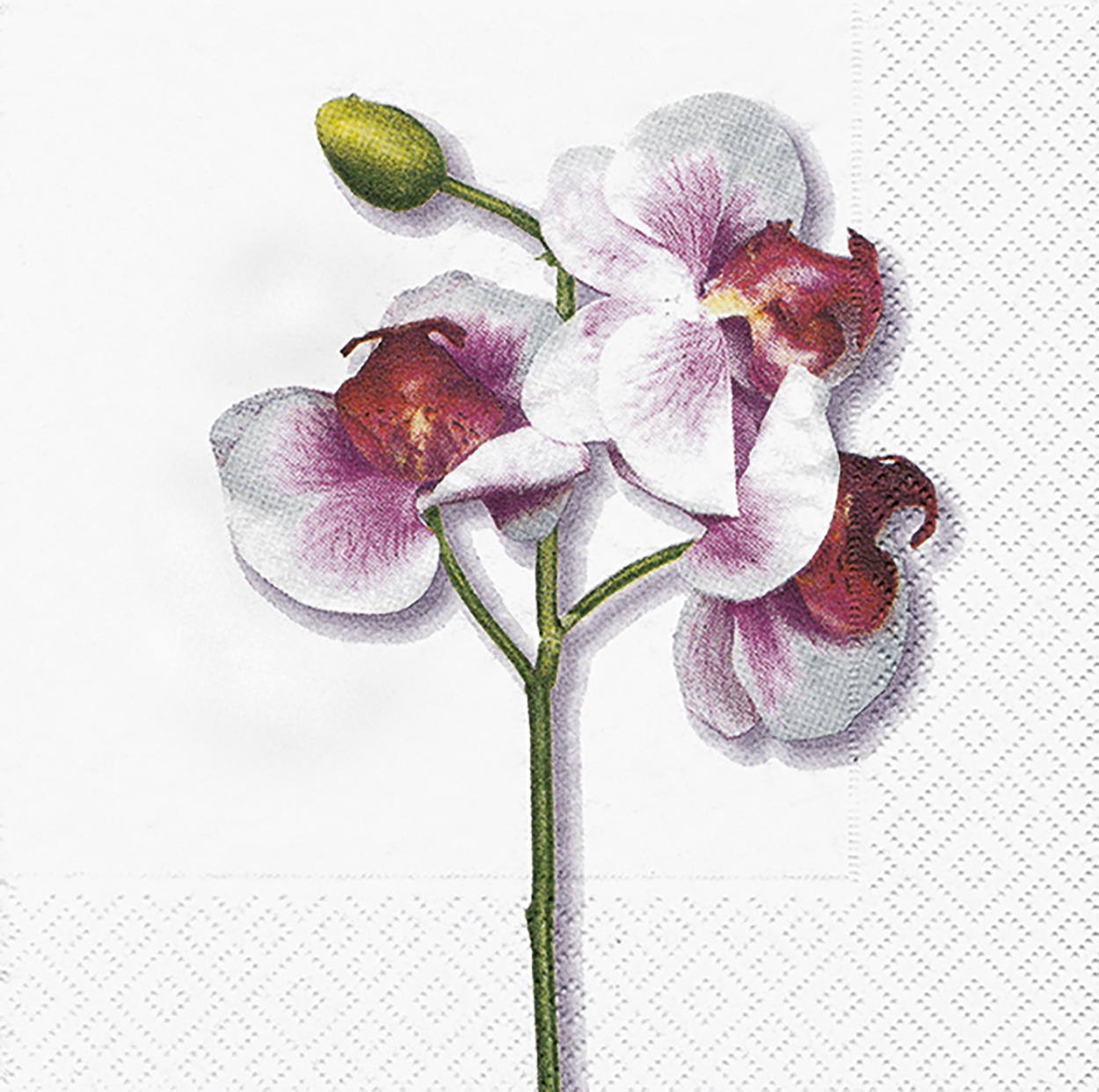 Lunch Servietten Classic orchid white