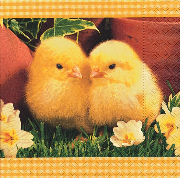 Lunch Servietten So soft