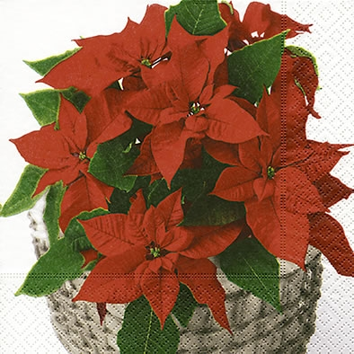 Lunch Servietten Poinsettia basket