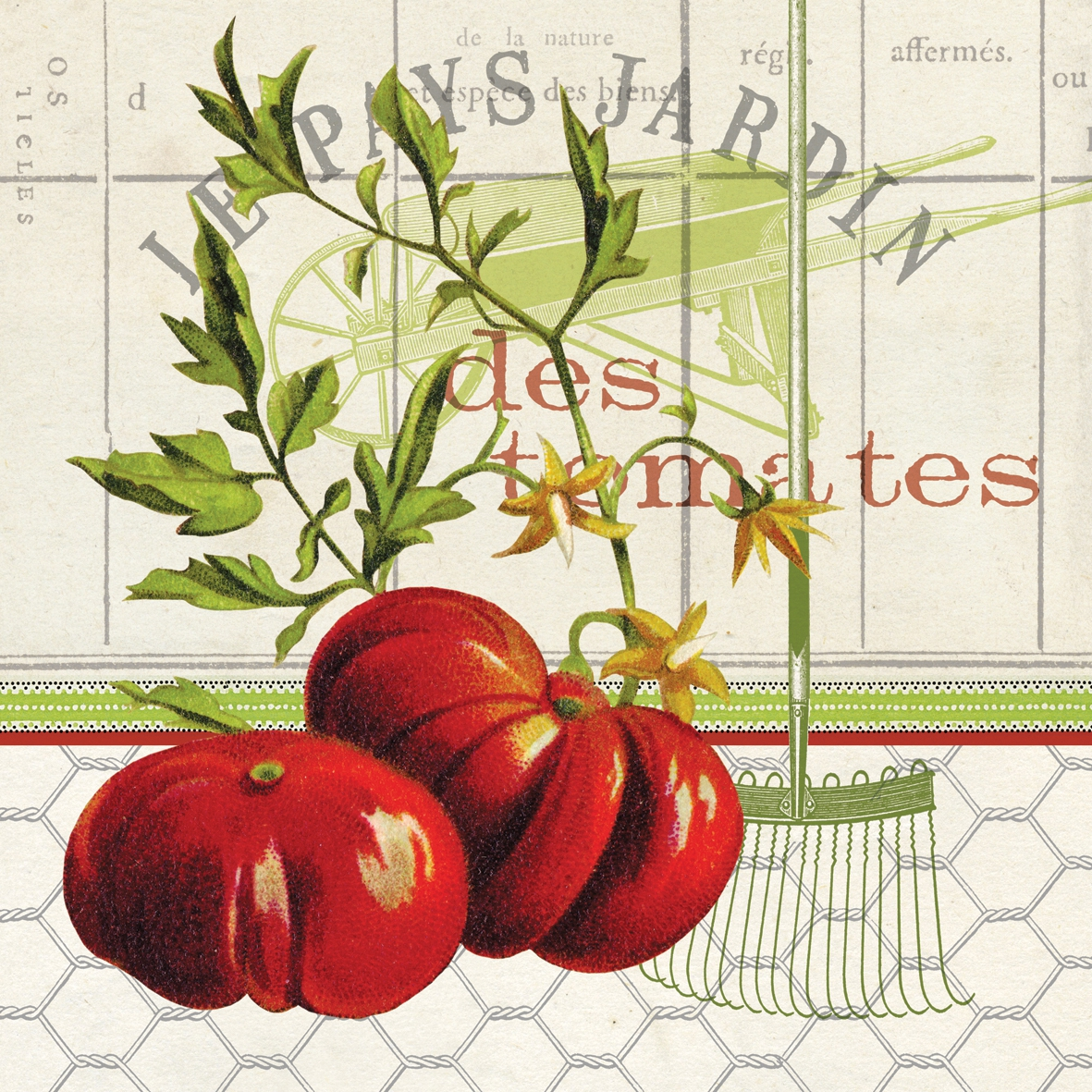 Paperproducts Design,  Gemüse - Tomaten,  Essen -  Sonstiges,  Everyday,  lunchservietten,  Tomaten