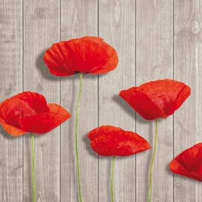 Servietten / Mohn,  Blumen - Mohn,  Everyday,  lunchservietten,  Mohnblumen