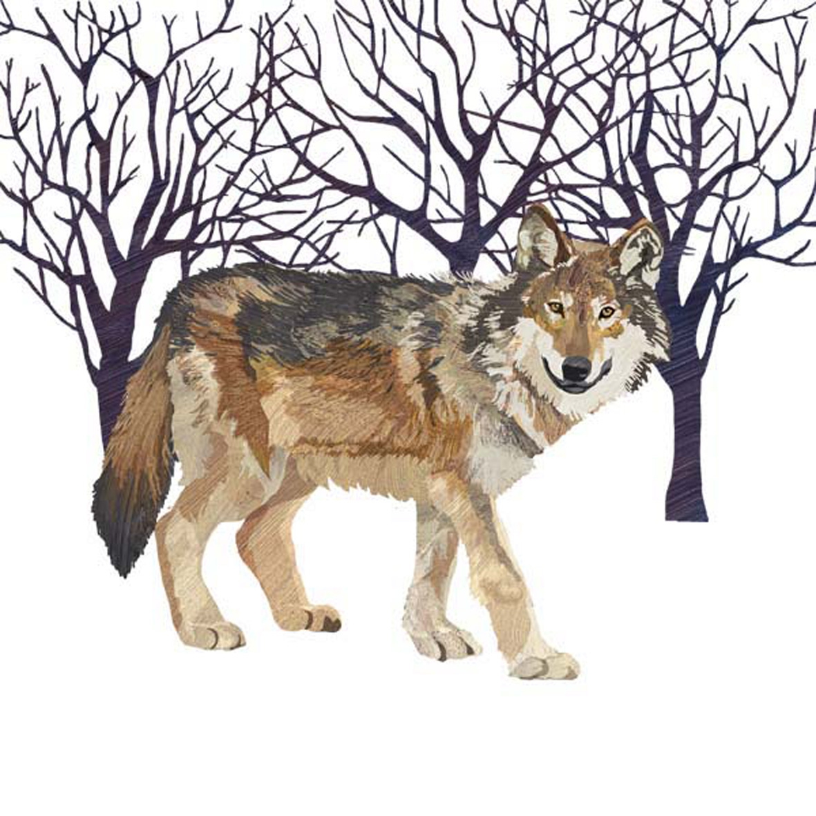 Paperproducts Design,  Tiere -  Sonstige,  Winter,  lunchservietten,  Wolf