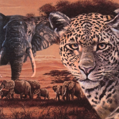 20 Servietten - 33 x 33 cm Safari Collage,  Tiere - Elefanten,  Regionen - Afrika,  Everyday,  lunchservietten,  Geparden