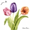 Servietten 33x33 cm - Colorful tulips